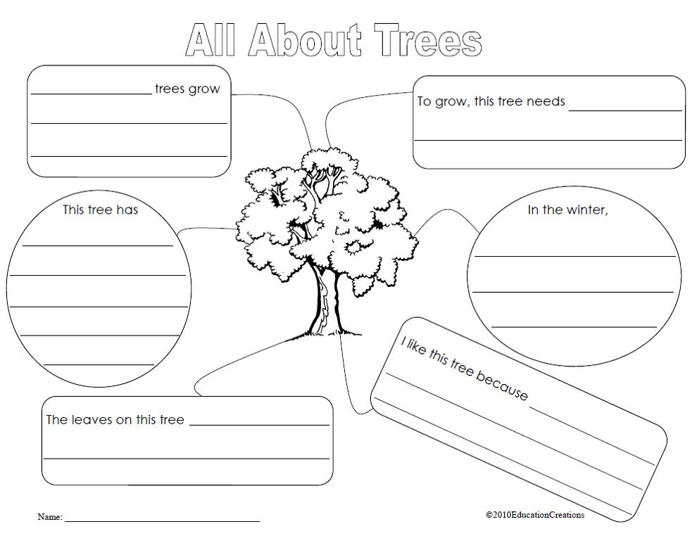 Blank Graphic Organizers For Science Graphic organizers
